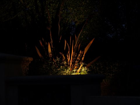 Landscape Lighting Newbury Park Dramatic Lighting