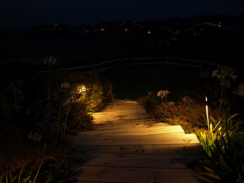 Landscape Lighting Newbury Park Steps
